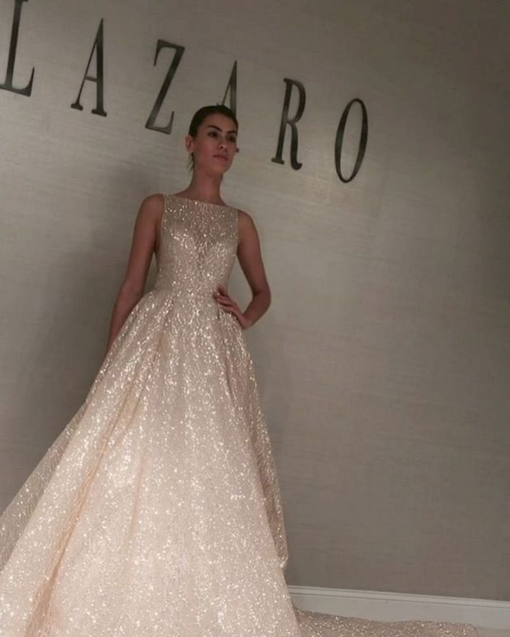 40+ Beautiful Lazaro Ball Gown Wedding Dresses For Awesome Wedding